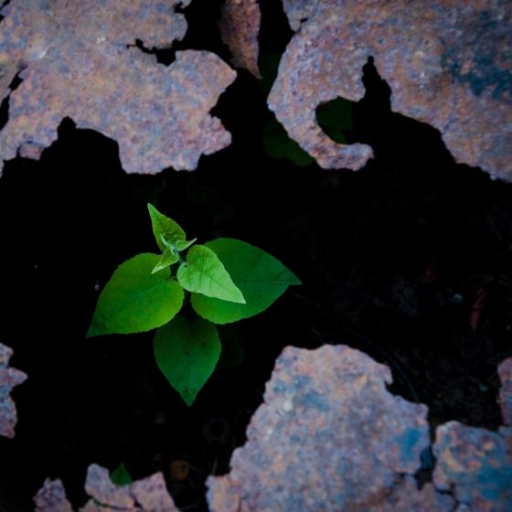 Ruhe Zen Alltagstipps Rituale Meditation Minimalismus Human Lifestyle Lebensstil Ratgeber